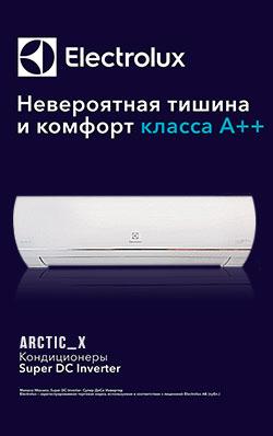 Arctic_X